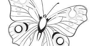 BHA19 Coloring Page Butterfly